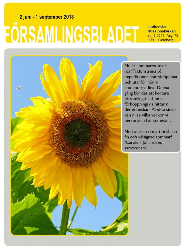 Församlingsblad nr 3 2013