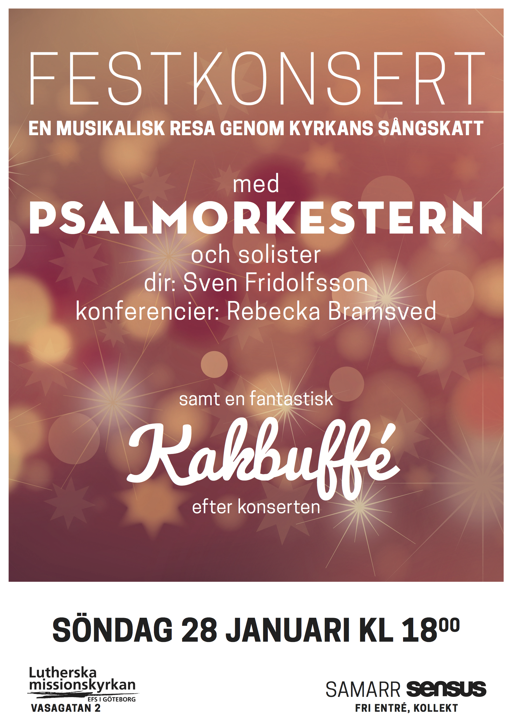 Psalmorkesterns vinterkonsert (1)