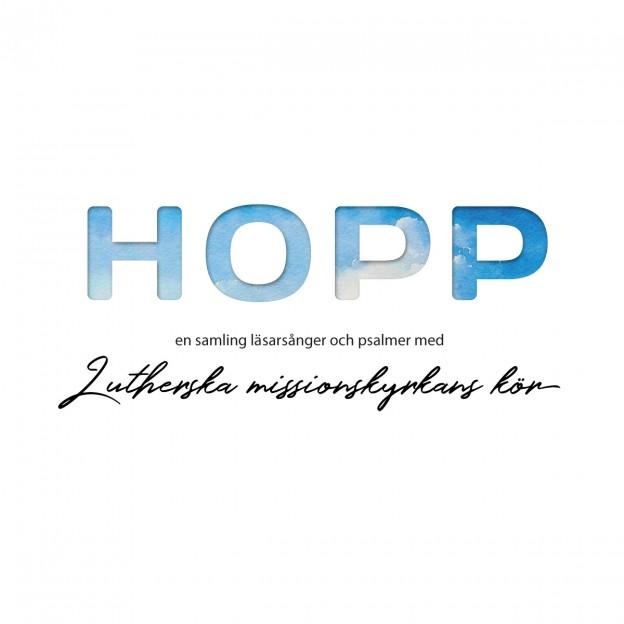 lmk-skiva-hopp