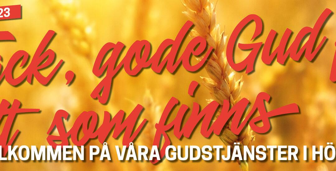 Gudstjänster kl. 11 fr o m söndag 8/8